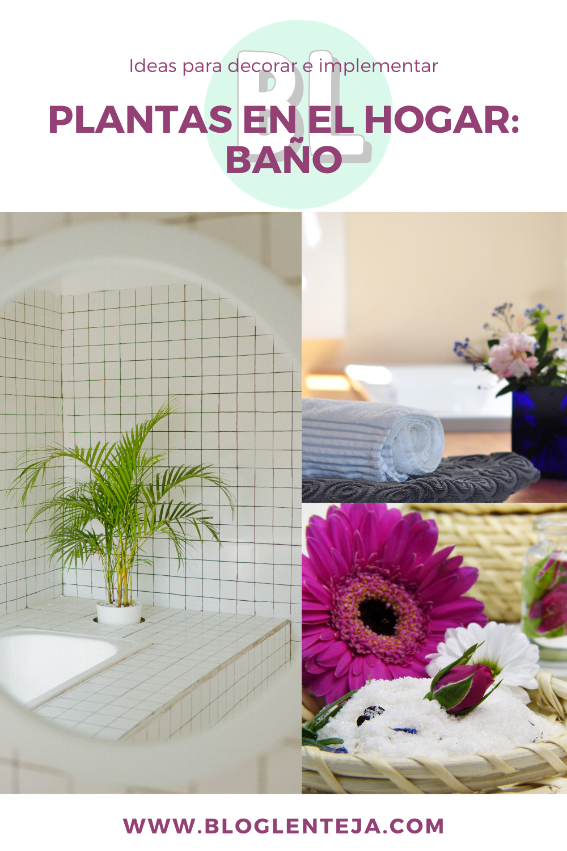 Plantas en el hogar: Baño | Hogar, Plantas, Para decorar uñas