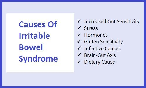 Causes of Irritable Bowel Syndrome www ibs-help-online com
