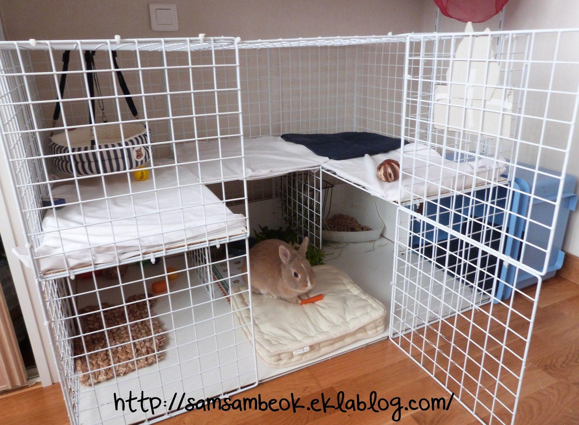 une cage fait maison pour mon lapin lapin pinterest. Black Bedroom Furniture Sets. Home Design Ideas
