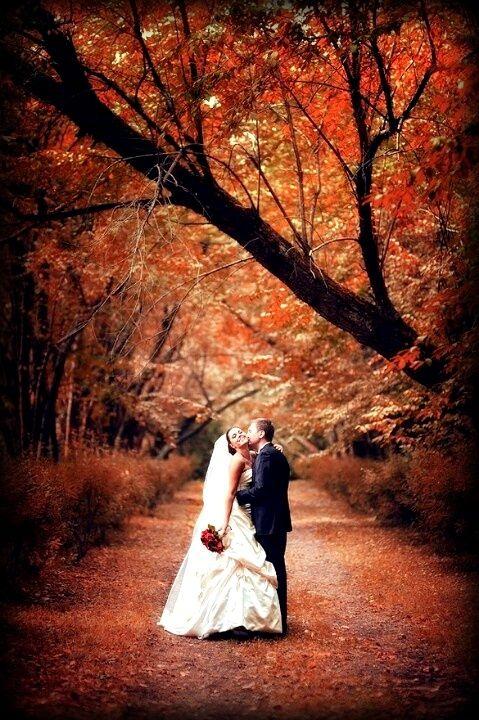 stunning autumn wedding ideas fall wedding   Wedding Dreams ...