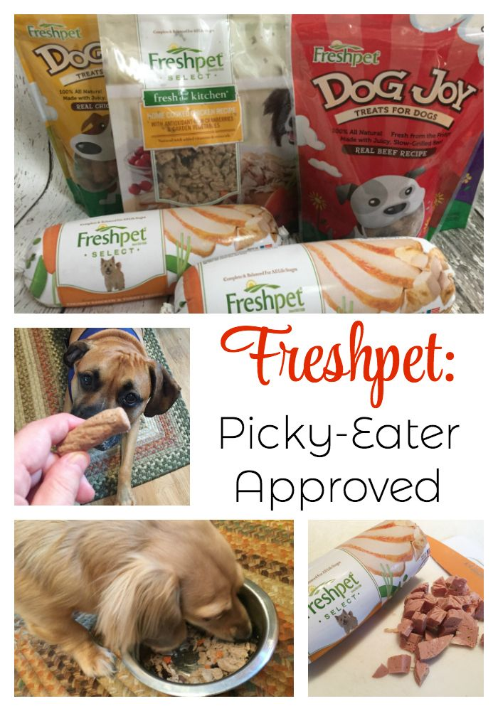 Freshpet Is Picky Eater Approved Best Dog Food Picky Eaters