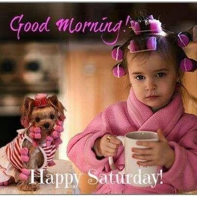Good Morning Happy Saturday Yorkie Funny Good
