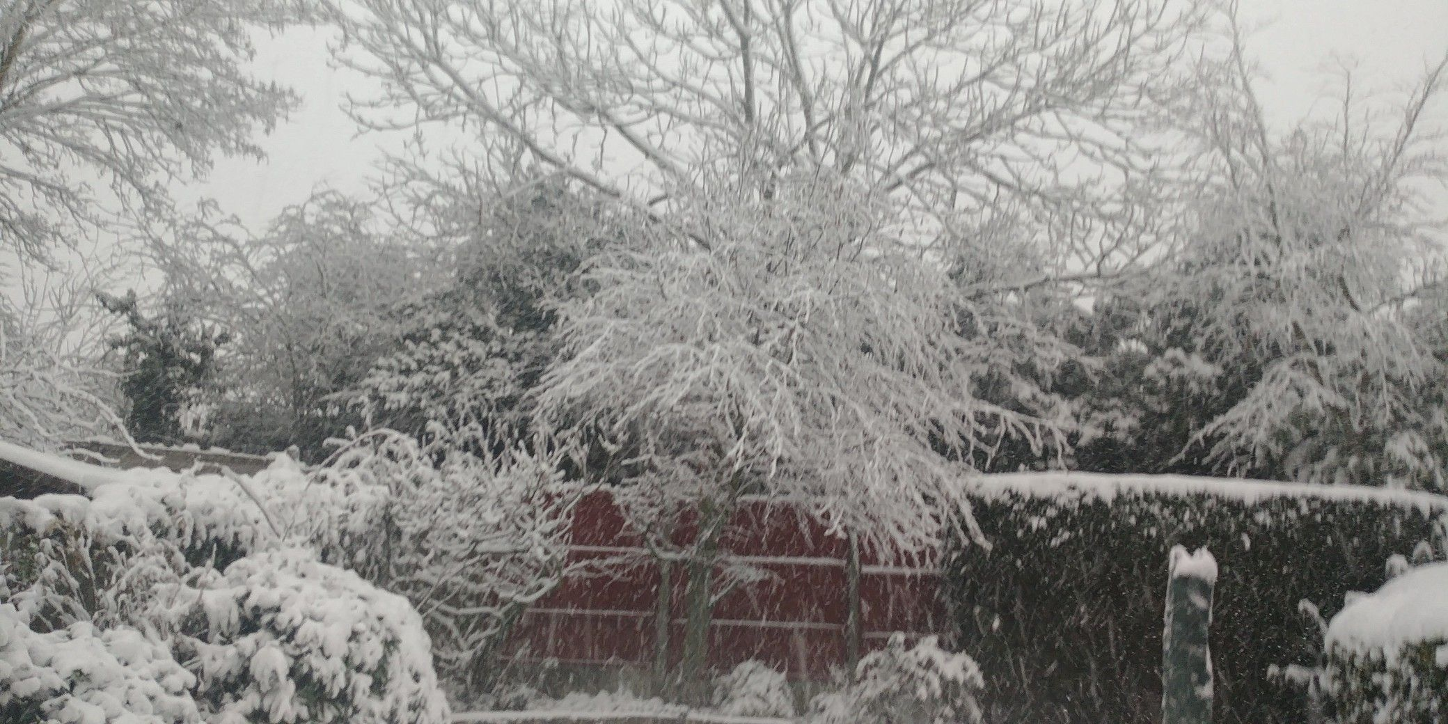 pablo neruda winter garden