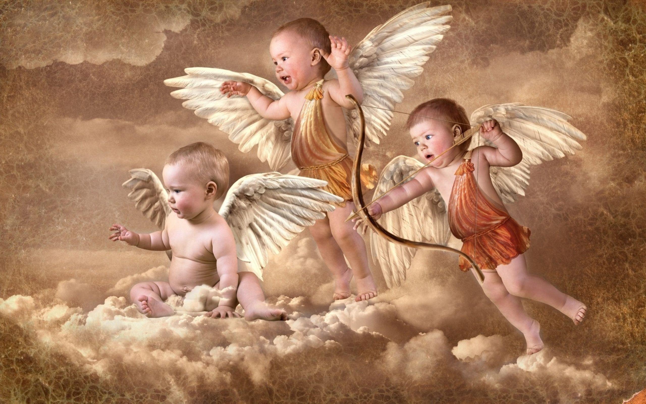 сайт картинок ангел размножать экзотический