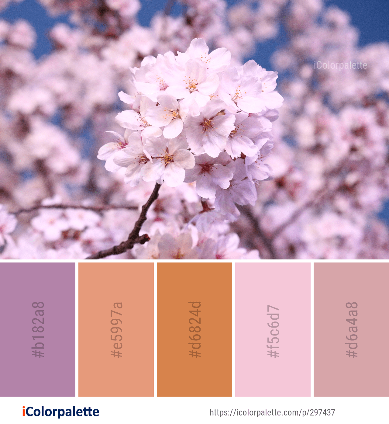 Color Palette Ideas From 1804 Blossom Images Icolorpalette Color Palette Color Color Mixing