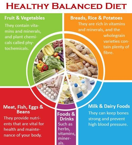 how to have a healthy balanced diet