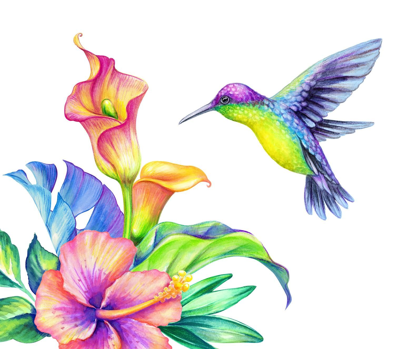 Flying Hummingbird With Tropical Calla Lily Wall Decal