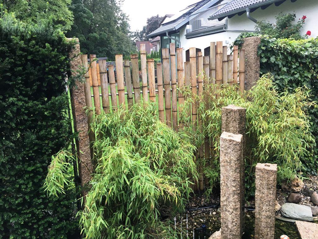 Sichtschutz garten bambus smartstore for Garten bambus