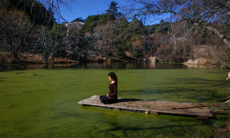 Jikoji, founded by Steve Jobs' Zen mentor, offers