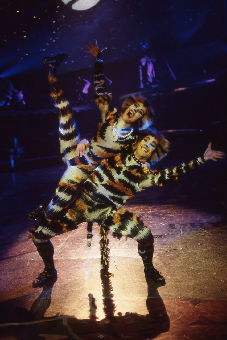 Cats on Screen Cats the Musical Jellicle cats