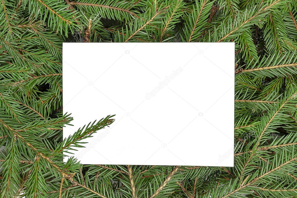 New Year Theme Frame From Green Branches Of A Christmas Tree Stock Ph Ad Frame Green Year Theme Ad Frame Photo Tree Christmas Tree