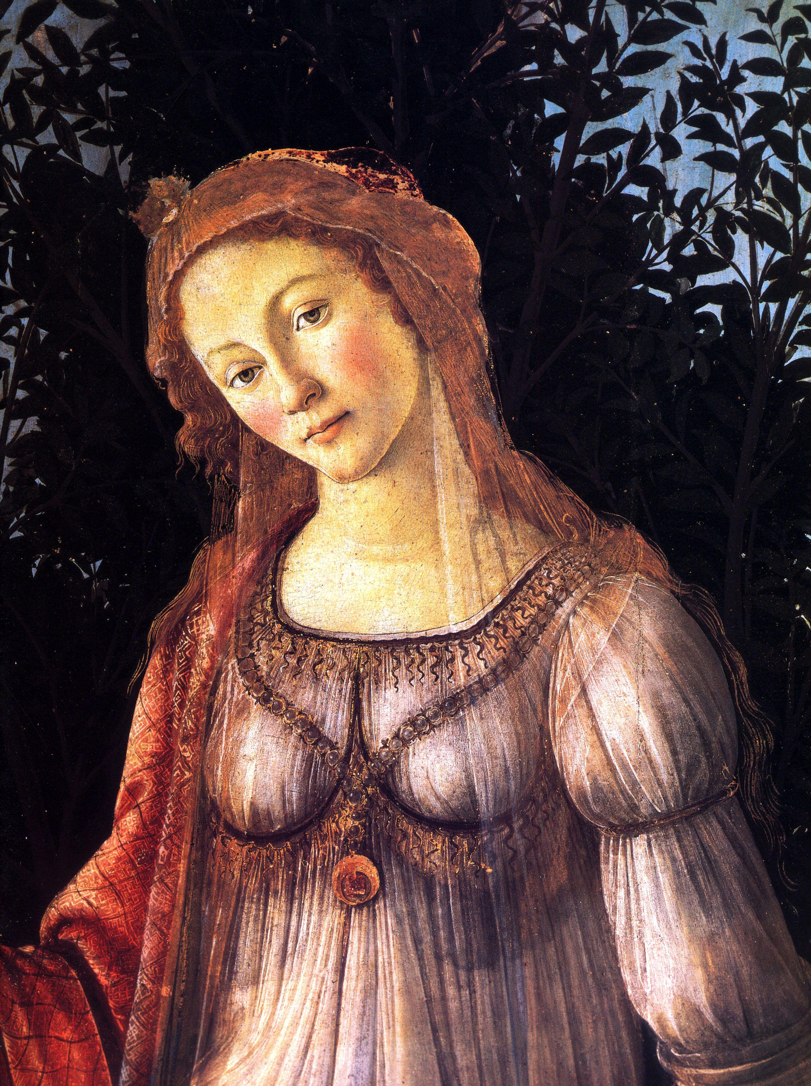 Image result for venus in botticelli's primavera