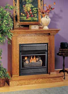 Comfort Glow Compact Gas Fireplace System The Smallest