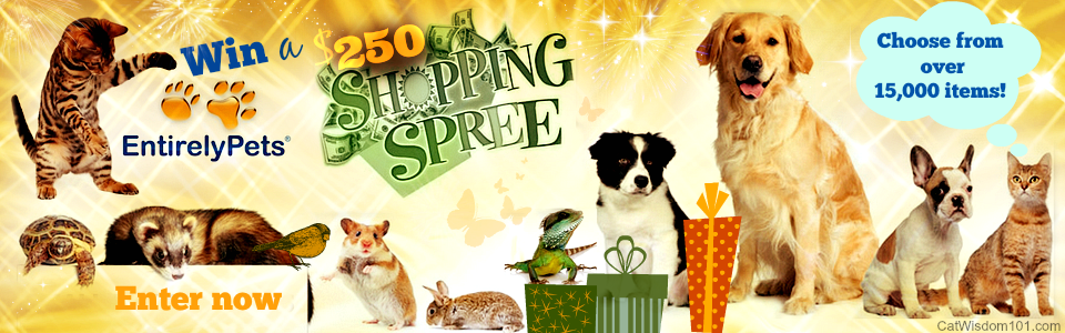 Win An Awesome 250 Shopping Spree From Entirely Pets