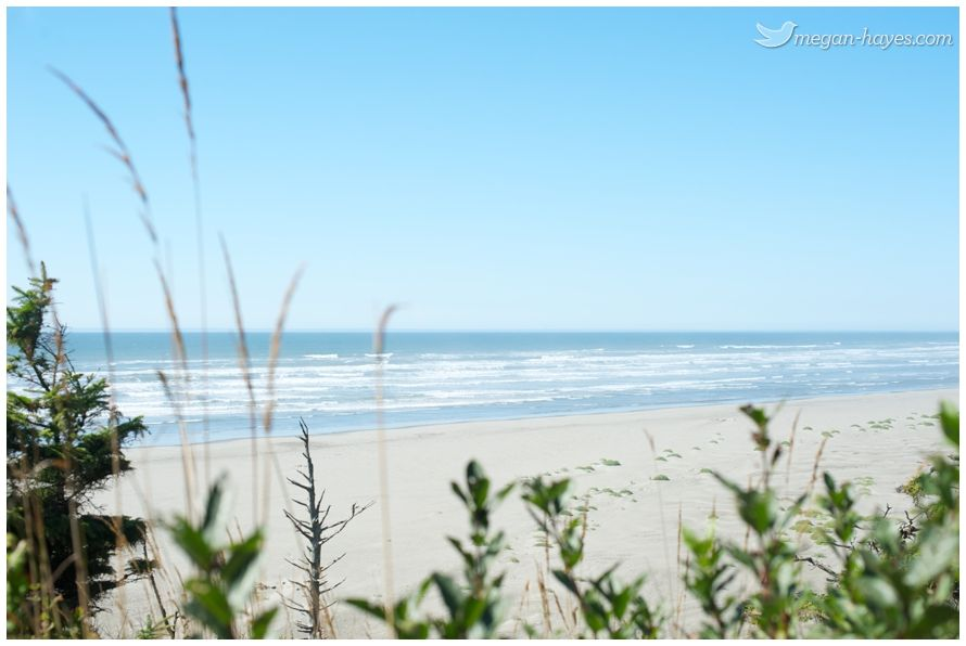 Seabrook Washington Beaches Cool Places To