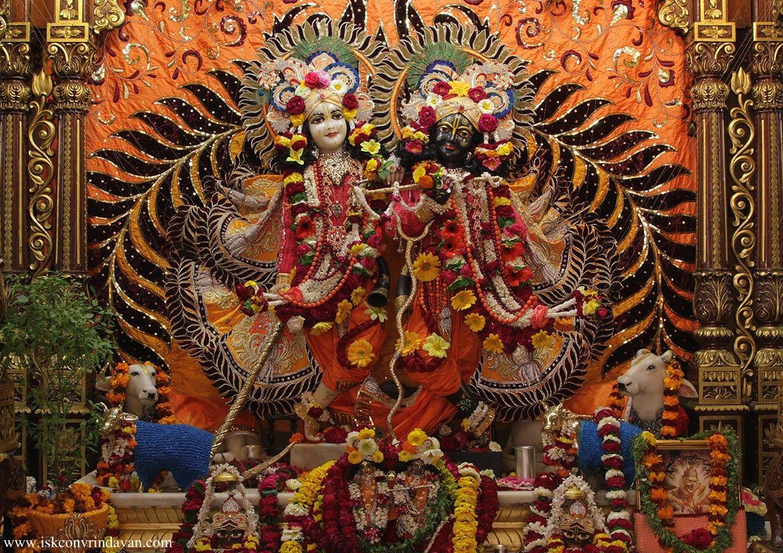 Dandavats | Astounding World Holy Name Week In Vrindavan