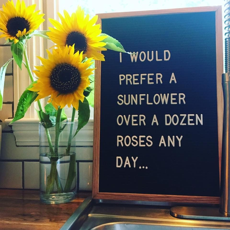 Pin by tera holland on letter board quotes pinterest sunflowers