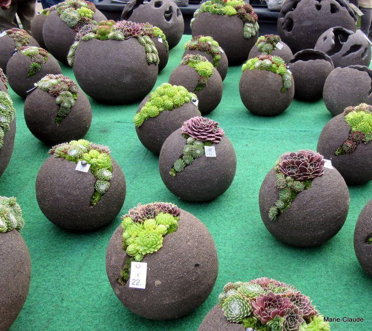 Hier sind drei coole Dinge, die ich diese Woche online entdeckt habe – Zementkugelpflanzer #articlesblog