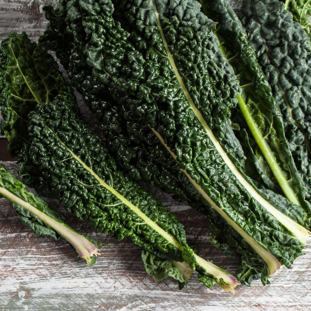 Are you storing your kale the right way in 2020 how to