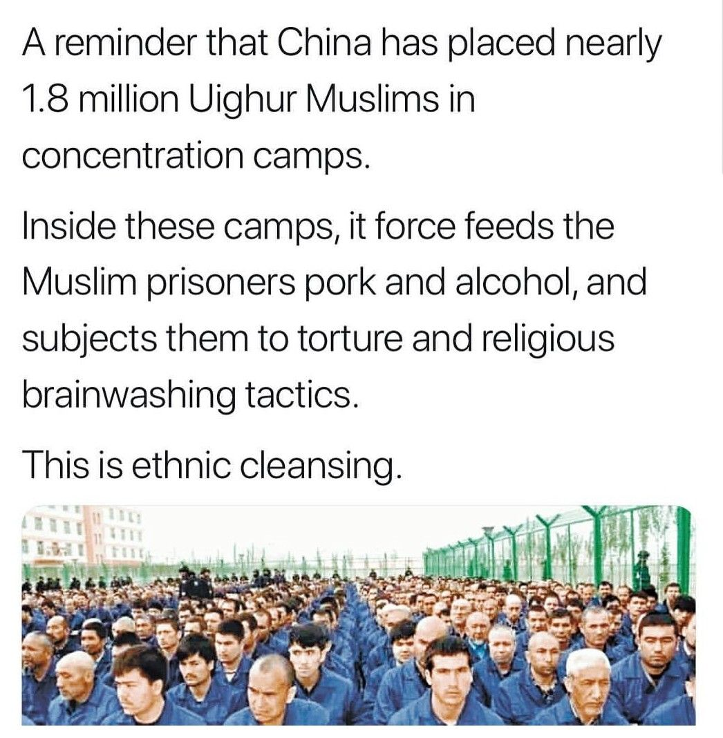 Photo of I looked this up and it's independently reported, including by Amnesty Interna…