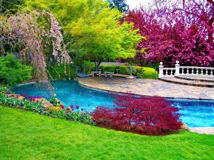 Best Colorful Flower Natural Scene Wallpaper 2013 2014 Nature Desktop Wallpaper Nature Scenes Beautiful Pools