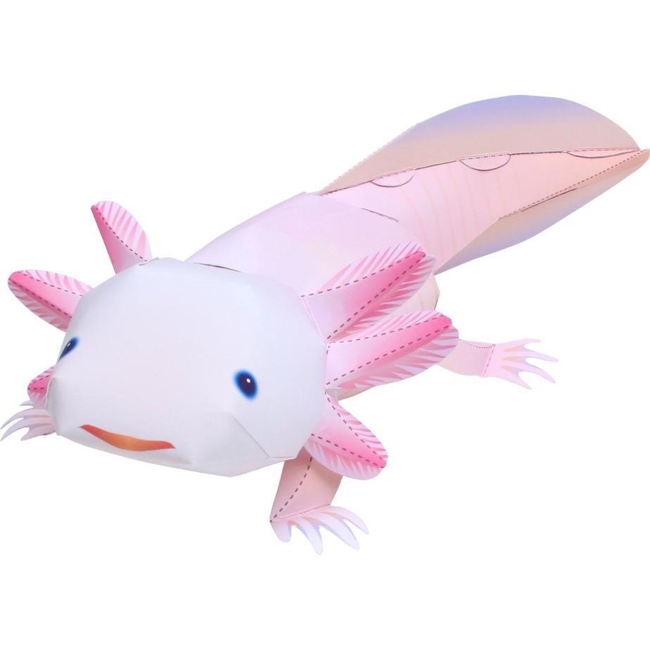 Axolotl,Animals,Paper Craft,Animals,Paper Craft,Pet Series,Amphibians