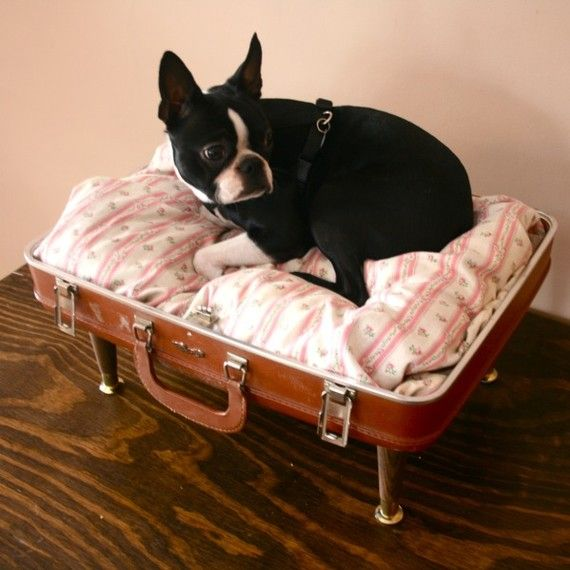 Upcycle Suitcase Pet Bed Brown And Floral Suitcase Dog Bed Pet Bed Diy Dog Stuff