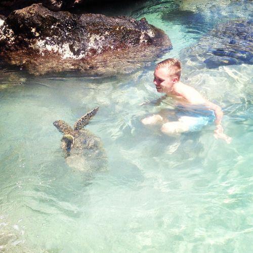 Big Island Beaches: Turtle Point, Hapuna Beach. Big Island, Hawaii.