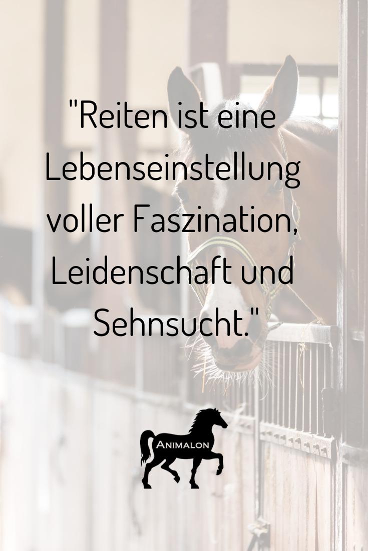 """Unsere heutige Quote: """"Reiten ist eine Lebenseinstellung voller Faszination, Leidenschaft und Sehnsucht."""" 💖 Wer würde Reiten auch so bezeichnen? 💫  #pferdesprüche #pferdequoten #pferdezitate"""