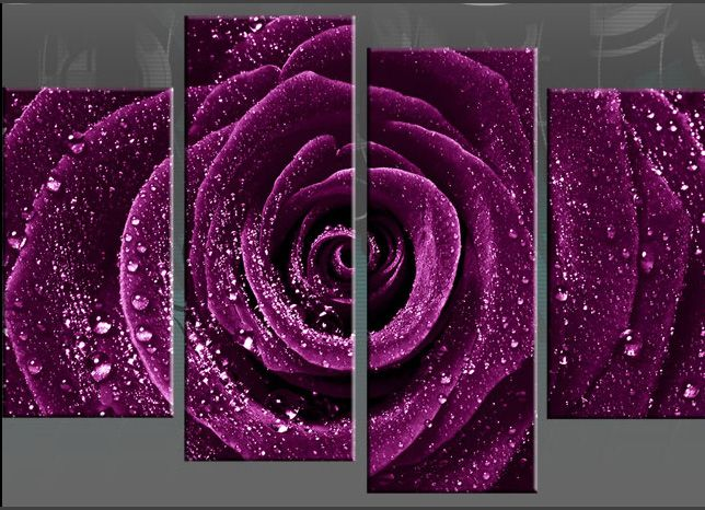 Purple Rose Canvas Purple Rose With Water Droplets Dew Wall