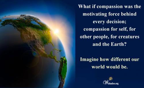 Imagine Compassion