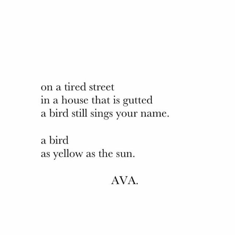 Ava Instagram VavAva Poetry Quotes  Pages