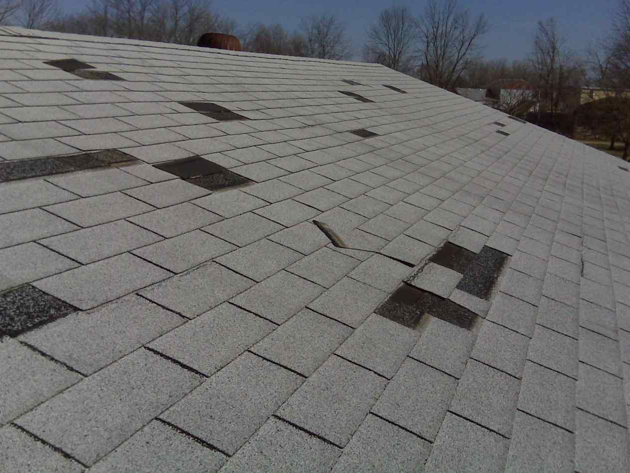 Best Asphalt Roof Shingles Types Roof Damage Roof Shingles 640 x 480