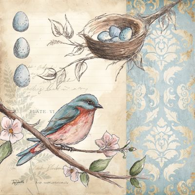 RB5124TS <br> Blue Bird Damask I <br> 12x12\' | Birds | Pinterest ...