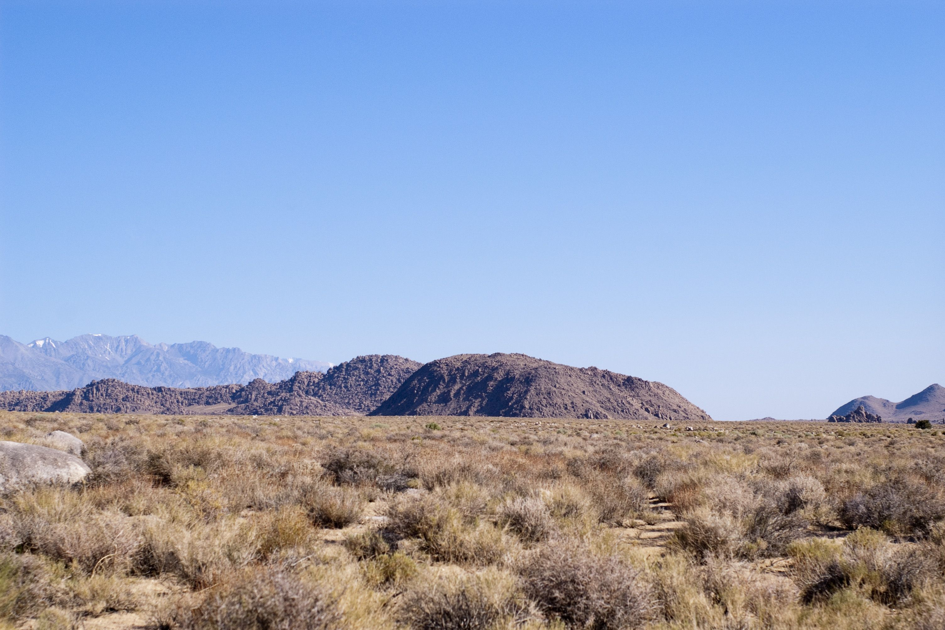 When I Nearly Died in Death Valley (You Won't Believe What Happened Out There!)