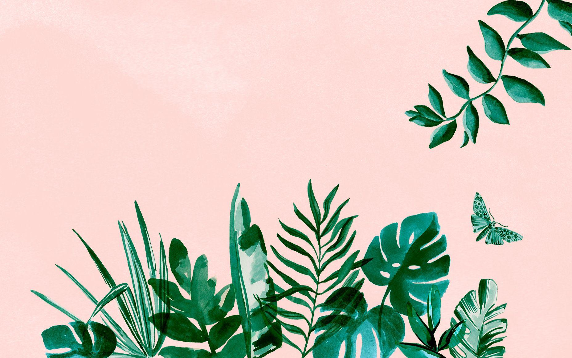 Desktop Tropical Leaf Wallpaper Tropical palm leaf wallpaper (24+ images). desktop tropical leaf wallpaper