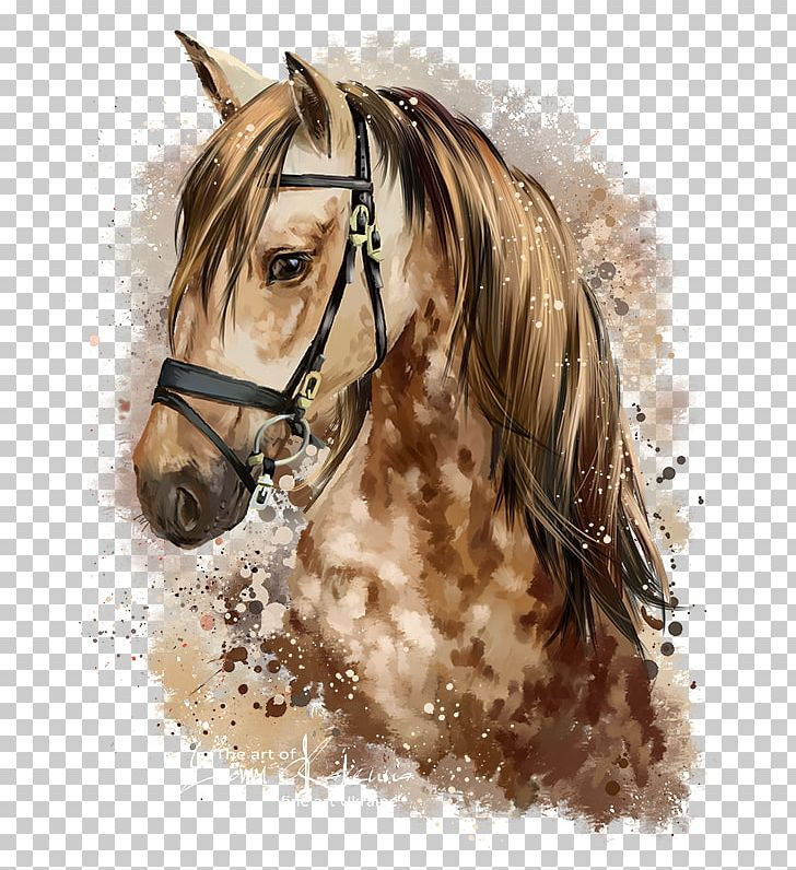 Horse Pony Watercolor Painting Drawing Png Clipart Animals Art Bridle Deviantart Equestrian Horse Head Drawing Watercolor Horse Watercolor Horse Painting