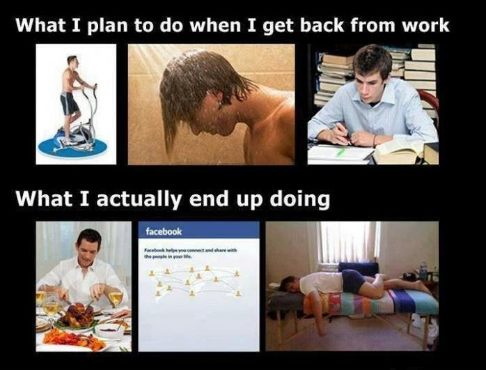 What I Plan To Do When I Get Home From Work Funny Funny Quotes Humor