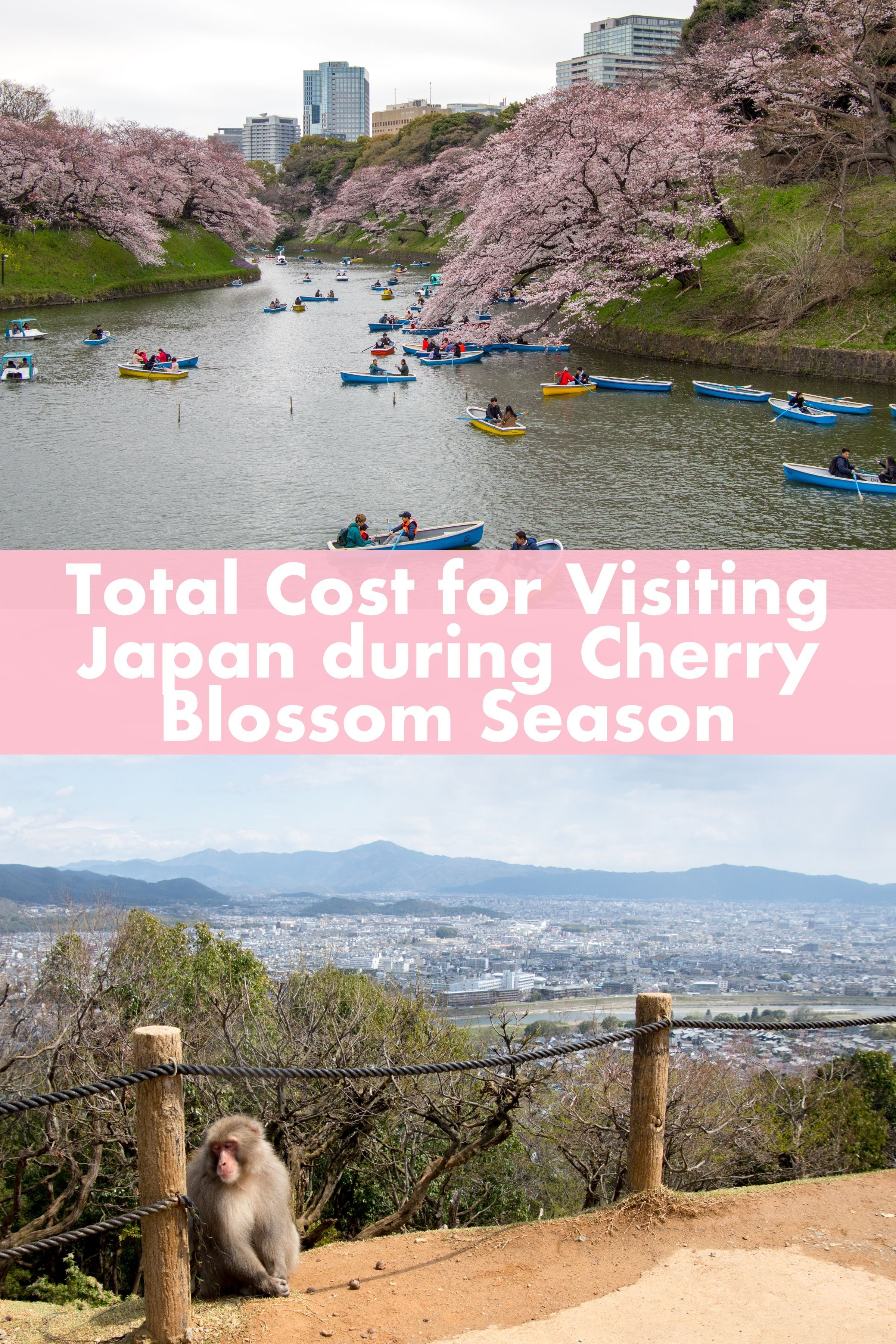 How Much Does It Cost To Travel To Japan Here Is A Detailed Account Of Everything We Spent On Our 2 Week Trip Around Japan During C Japan Travel Travel Japan