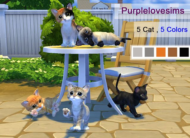 Sims+4+CC's++The+Best+Cat+by+PURPLELOVESIMS