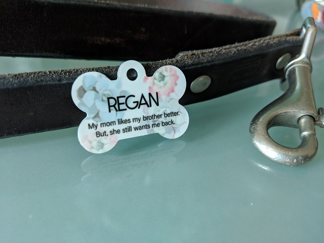 We Love Seeing Cool Pet Tag Ideas Pets Dogs Cats Pet Tags Personalized Pet Love Your Pet