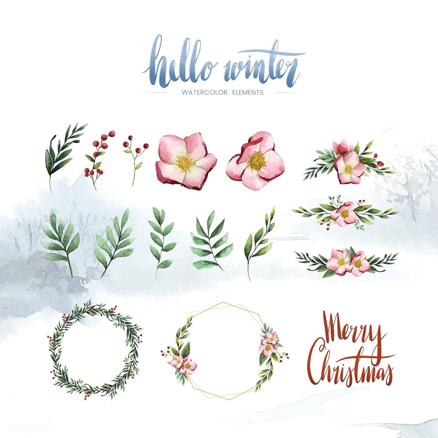 Watercolor winter bloom and elements vector free image