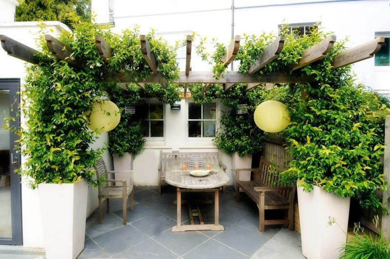 Kletterpflanzen im Garten - moderne Gestaltung Innenhof Ideen - Vorgarten Moderne Gestaltung