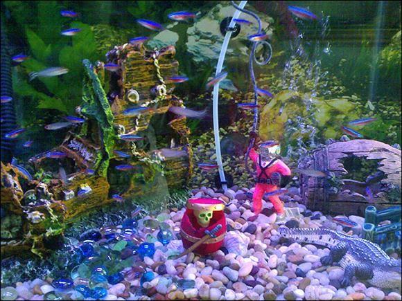 Pirate Shipwreck Themed Aquarium Fish Aquarium Decorations
