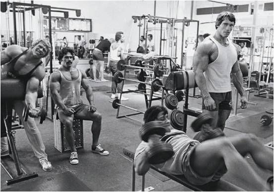 Arnold at Gold's Gym   Bodybuilding workouts, Bodybuilding, Bodybuilding  motivation