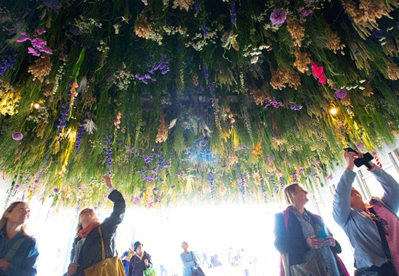Fotograf Fanger Verdens Aeldste Traeer Mens De Stadig Er Iblandt Os Chelsea Flower Show Traeer Fotograf