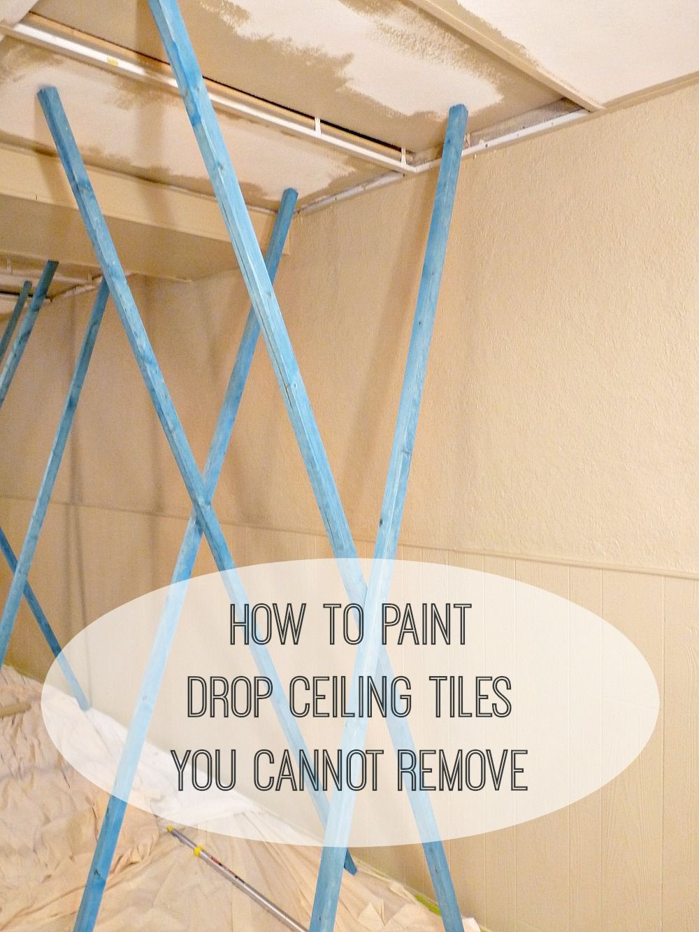 Basement update how to paint drop ceilings you cannot remove basement update how to paint drop ceilings you cannot remove dans le lakehouse dailygadgetfo Images