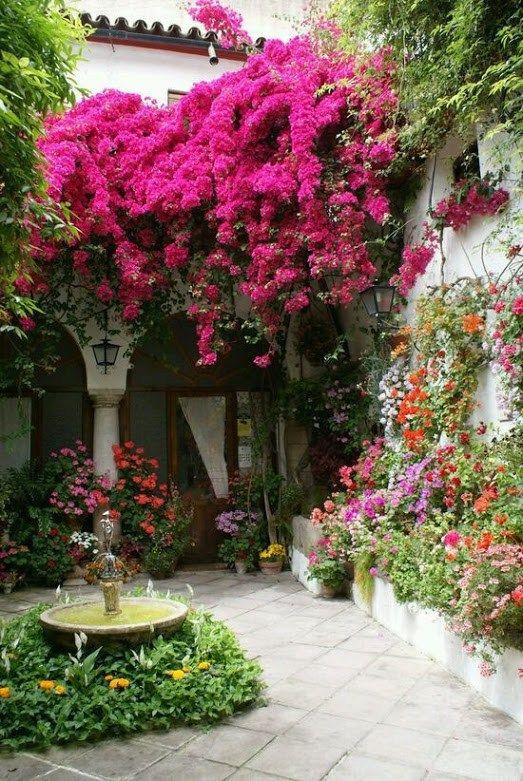 Imagenes de casas con jardines llenos de flores para fondo for Imagenes de jardines de casas
