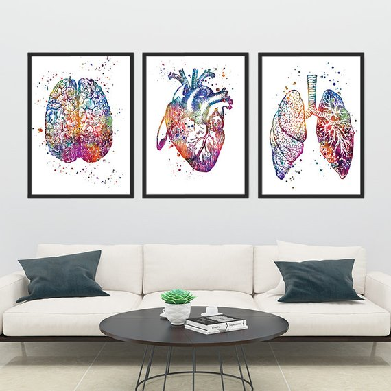 School Nurse office decor, Anatomy art Set of 3 watercolor prints Human Brain Heart and Lungs, Medical Student Christmas Gift