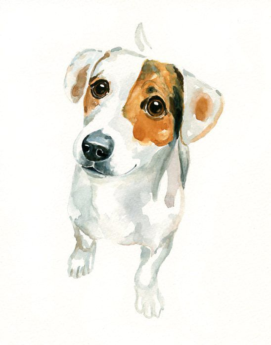 Jack Russel By Dimdi Original Watercolor Painting 8x10inch